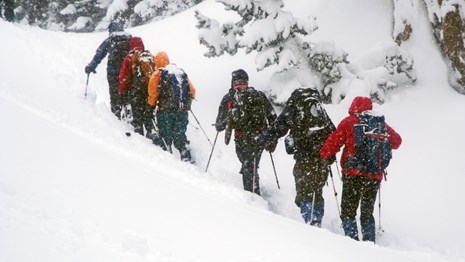 A group of snowshoes ascends a snowy slope