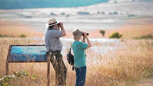 A ranger and visitor knee deep in grass with binoculars.