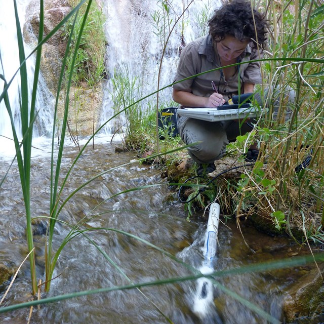 Woman kneeling in tall grass by the side of a stream, writing on a pad with a waterfall behind her.