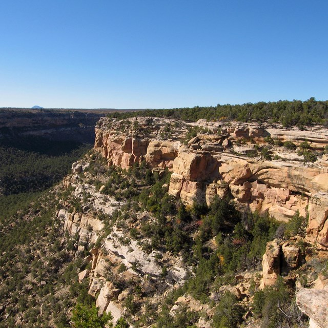 View of a forested canyon with dwellings built into bare sections of rocky cliff in the foreground