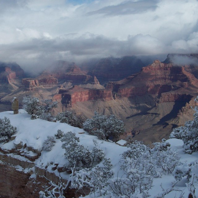 Snow covered rim of Grand Canyon under cloudy skies.