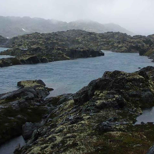 The rocky intertidal zone of Klondike Gold Rush NHP.