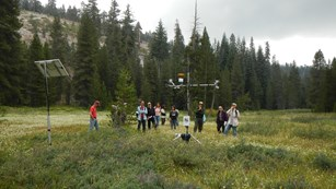Scientists discuss a meteorological station in Sequoia National Park.