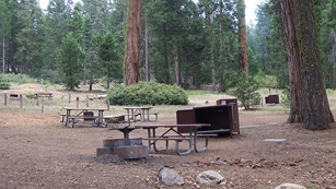 A group site at a Grant Grove campground