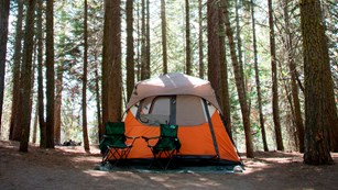 An orange tent and two camp chairs is nestled among tall trees in a campground.