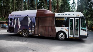 A Sequoia Shuttle large bus. Photo by Alison Taggart-Barone.
