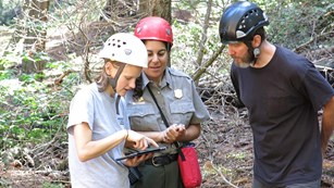 Park Science Coordinator and two university scientists discuss giant sequoia research.