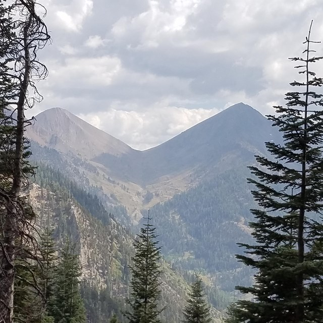 Conifer trees and the v-shaped Farewell Gap pass in the background, Mineral King