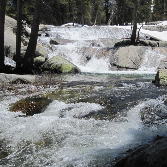 Marble Fork of the Kaweah River.
