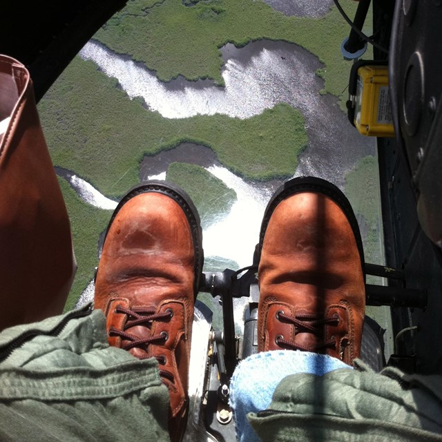 Scientist looking down at the Everglades landscape from a helicopter