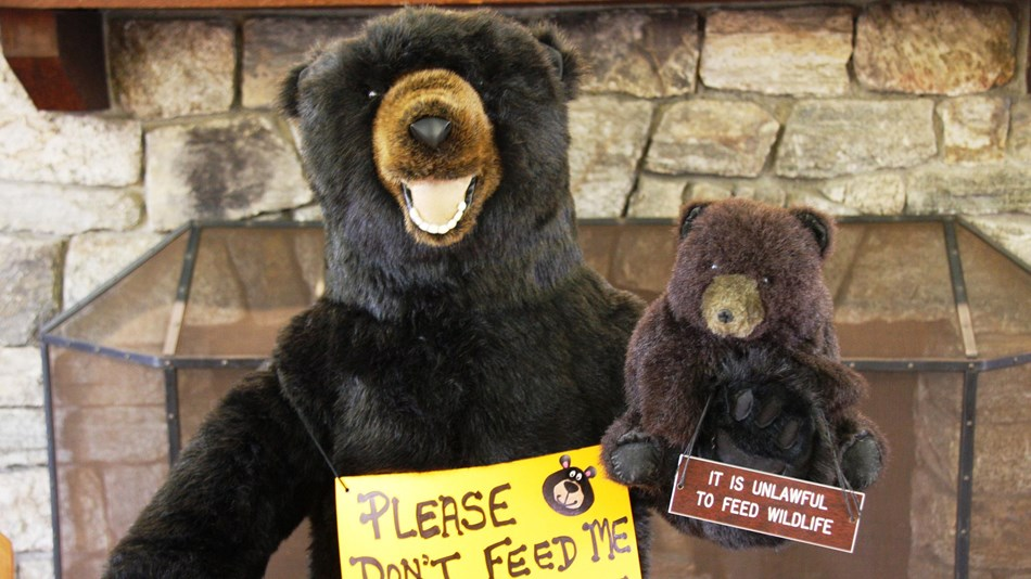 A stuffed bear wearing safety signs.