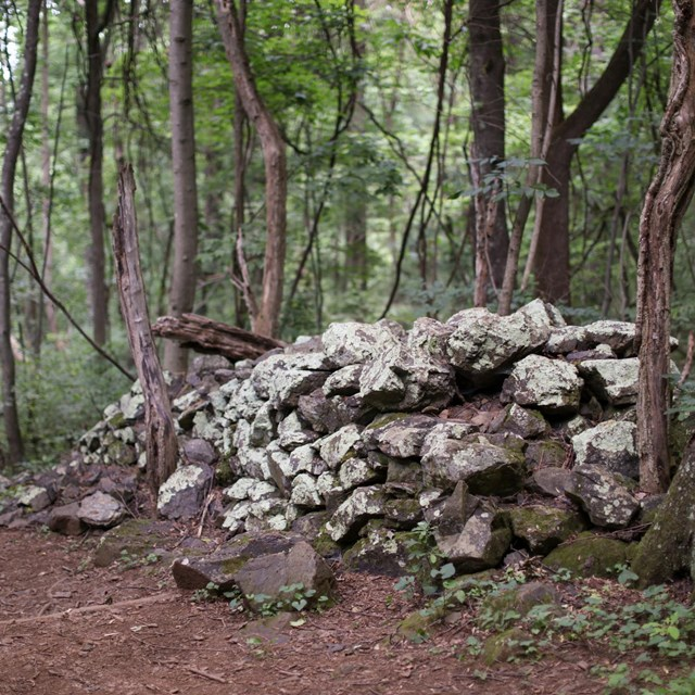 An old rock wall leans over a dirt hiking trail in the middle of a dark green forest.