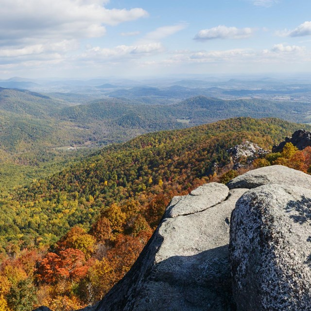 A summit of rocks highlighted by the yellows and reds of fall colors.