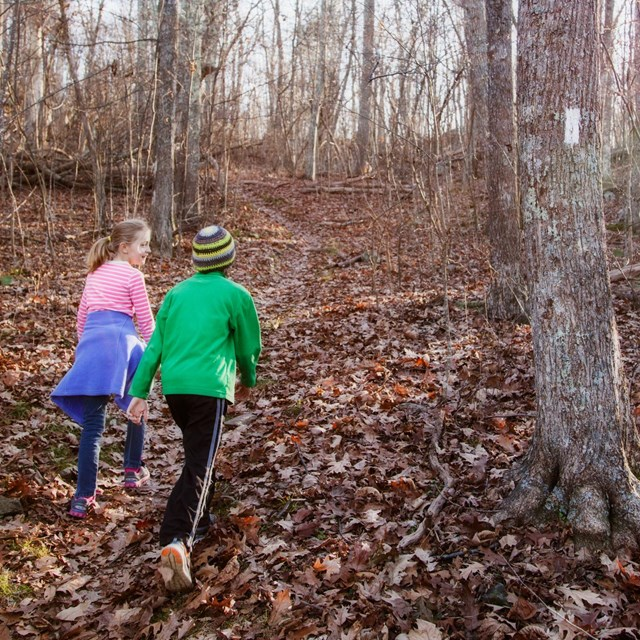 A young boy and girl hike up a trail strewn with brown, fallen leaves.