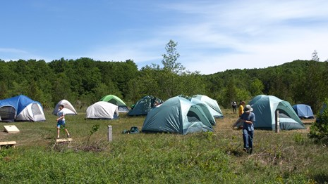 Many tents make a village in a group camping site.