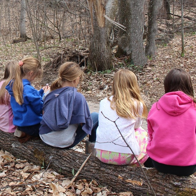 Students sitting on a log in the woods.