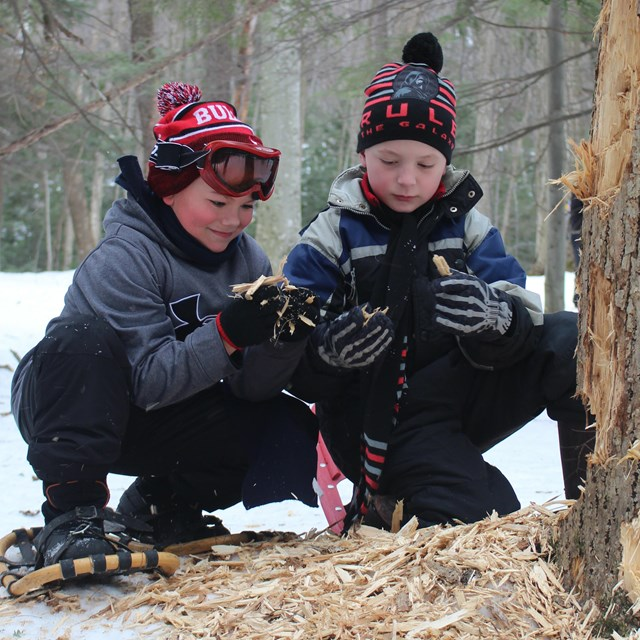 Two boys with snowshoes examine a tree and woodchips.