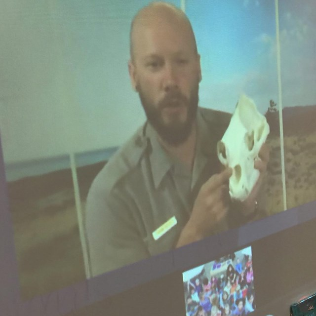 Ranger on a tv screen holds up a skull during a distance learning program