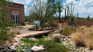 Desert Research Learning Center building and artificial stream