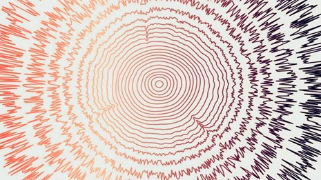 Illustration shows concentric tree rings with the outer layers turning into sound frequencies