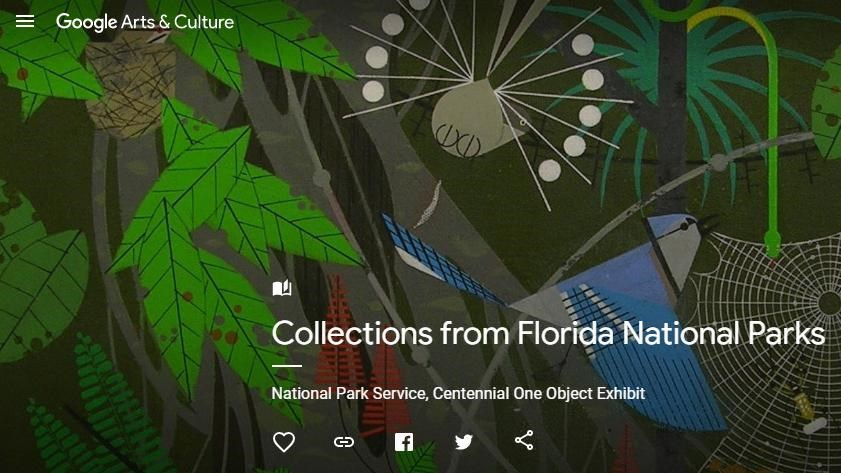 Web page Everglades painting for Google Arts and Culture exhibit from Florida National Pakrs
