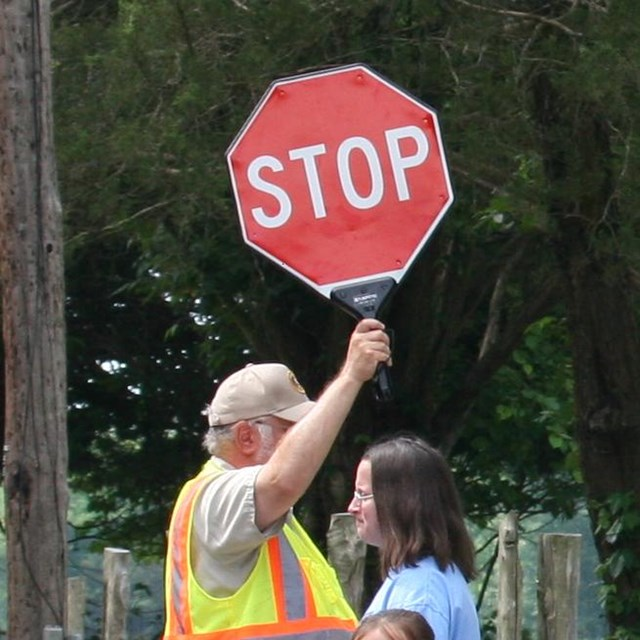 A crossing guard holds up a stop sign to let people cross a road.