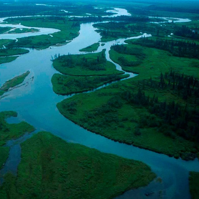 An aerial view of the Alagnak River.