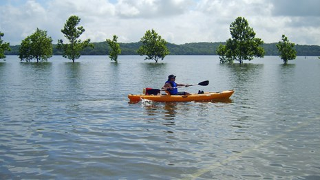 Kayaking across a flooded parking lot, Chickasaw NRA, July 2007.