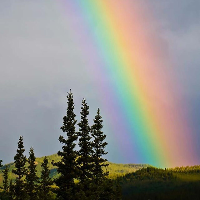Rainbow at Denali National Park, NPS photo