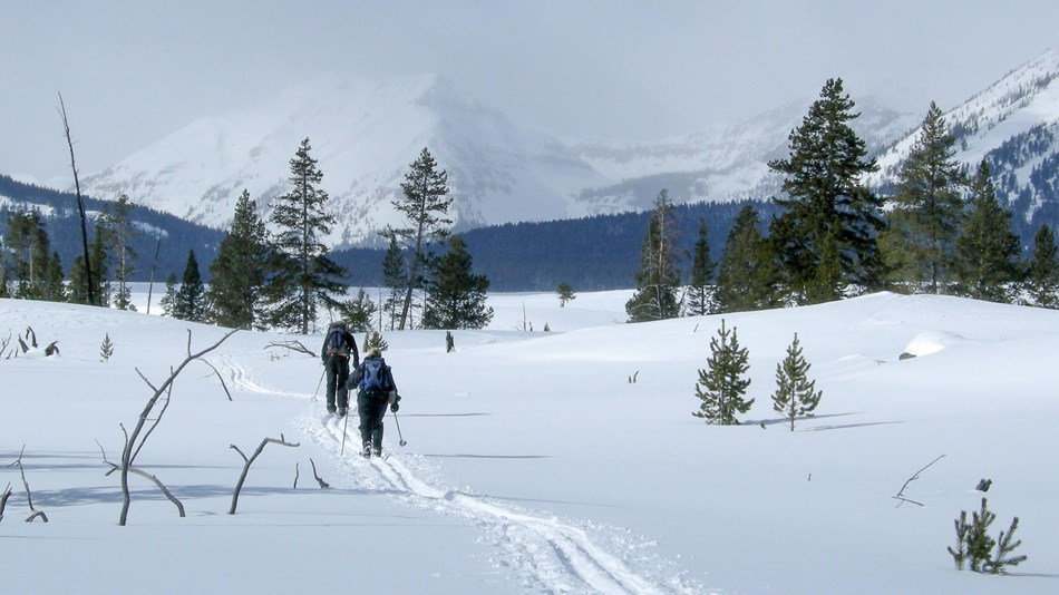 Two skiers make their way along the Bighorn Loop Trail with mountain views in the distance.