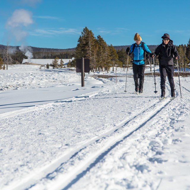 Two cross country skiers glide on freshly groomed ski tracks near Old Faithful.