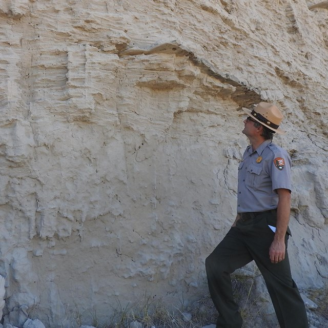A park ranger stands in front of a cliff face. Just above his head layering can be seen in the rock.