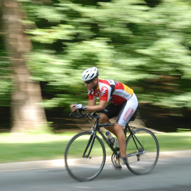 A bicyclist rides in Rock Creek Park.