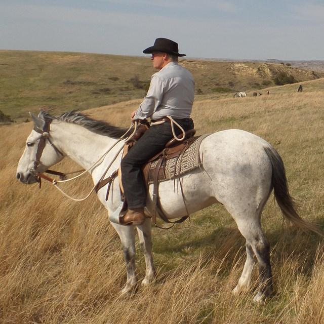 A man in a large brim hat rides a white and grey horse on a grassy hill