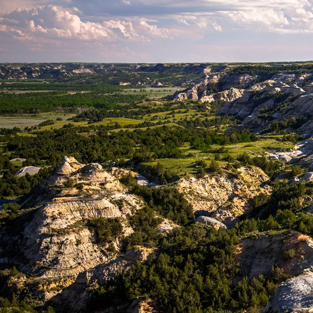 Rugged badlands buttes intermixed with deep green forests and prairie.