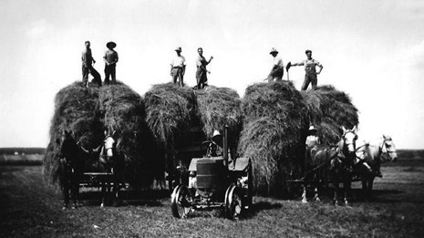 men standing on top of hay stacks behind horses and a tractor
