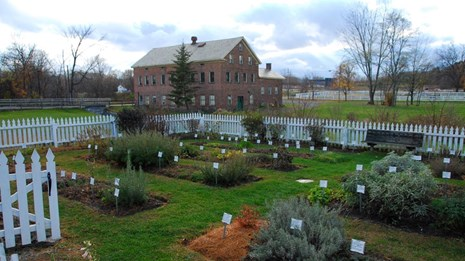 herb garden with a brick building in the background