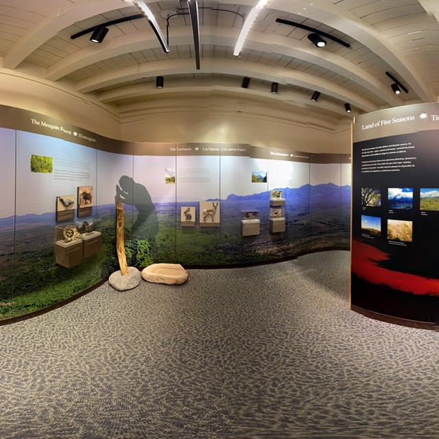 spherical panoramic photo of museum gallery with exhibit panels