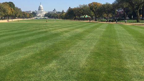 blue tractor in front of washington monument lays sod