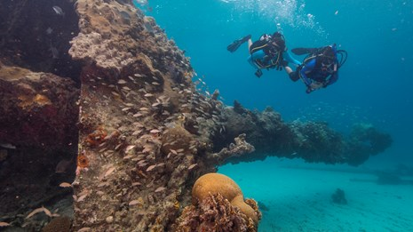 Recreational Diving in National Parks