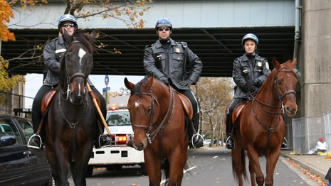 The New York Field Office Horse Mounted Unit patrols during the New York City Marathon in 2013.