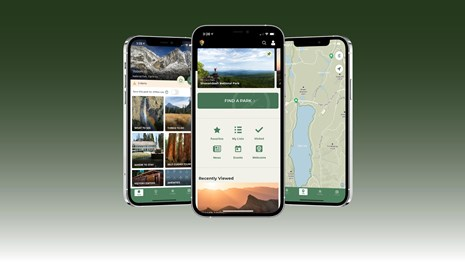 graphic, three smartphones displaying the park service app user interface