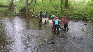 A group of people stand in a creek holding fishing nets.