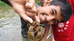 A young boy stands in a creek holding up a crayfish.