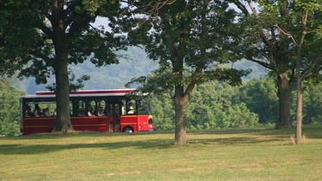 A red and yellow trolley travels up a wooded hill.