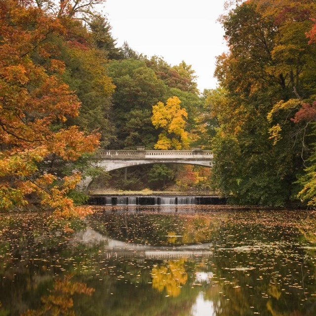 A view of a bridge spanning a creek surrounded by brilliant colored trees.