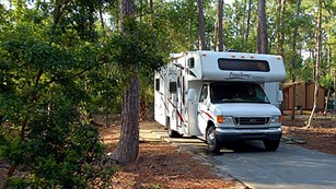 A large motor home sits parked in a wooded area