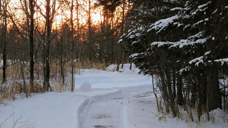A cleared path of snow heading down the Oberholtzer trail.