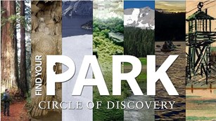Volcanoes - crystal clear lakes - caves - gigantic trees - explore the history and natural wonders!