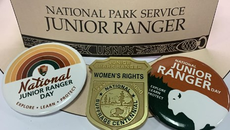 Junior Ranger paper hat, two buttons, and badge